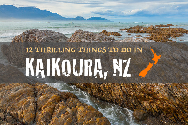 12 Thrilling Things To Do In Kaikoura