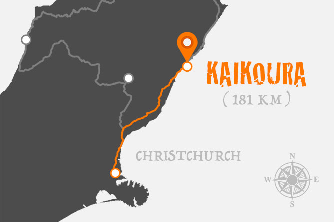 Christchurch To Kaikoura Driving Distance